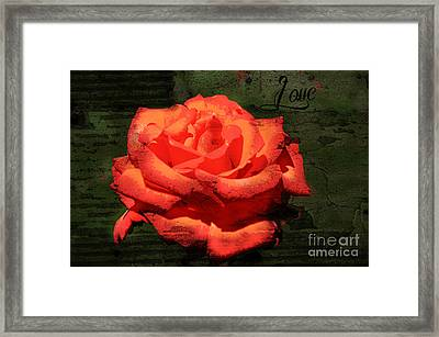 Framed Print featuring the photograph Love N Rose by Mindy Bench