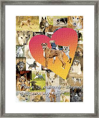 Love Of Boxers Framed Print