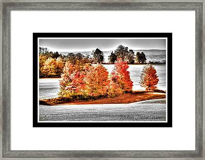 Framed Print featuring the photograph Love Of Red by Michaela Preston