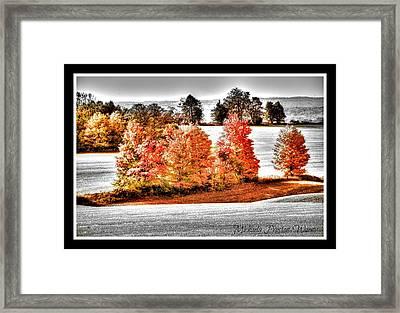Love Of Red Framed Print