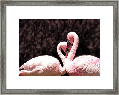 Framed Print featuring the photograph Love Of The Flamingos by Gena Weiser