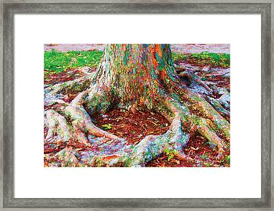 Love Of Trees Framed Print