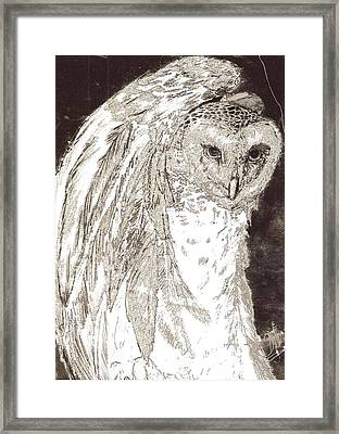Love Owl Framed Print by George Harrison