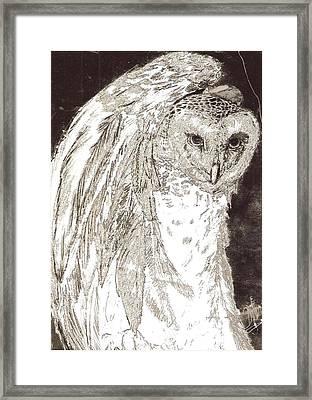 Love Owl Framed Print