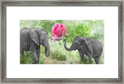 Love-rose Framed Print