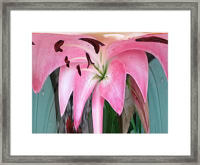 Love Simplicity  Framed Print by Robert  Nacke