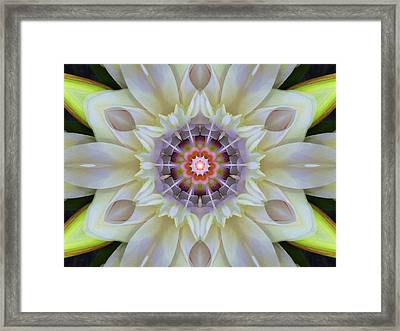 Love Star Flower Mandala Framed Print