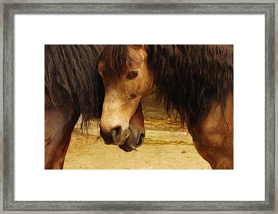 Love Story Framed Print by Ayse Deniz