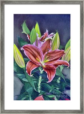 Love Story Lily Framed Print by Deborah Benoit