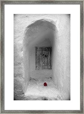 Remembering The Tragedy Of Romeo And Juliet This Closed Windows Receives A  Flower As Love Gift Framed Print by Pedro Cardona