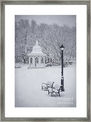 Love Through The Winter Framed Print by Evelina Kremsdorf