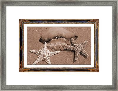Love Triangle  Framed Print by Betsy Knapp