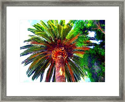 Love Under The Palm In San Diego Framed Print by Angela Annas