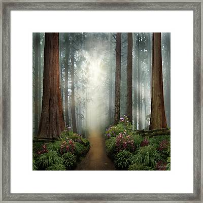 Love Walks With You Framed Print
