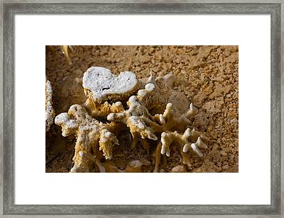 Love Yellowstone One Framed Print