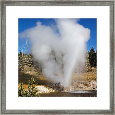 Love Yellowstone Two Framed Print