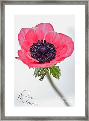 Love You... Framed Print by  Andrzej Goszcz