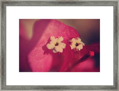 Loved Framed Print by Laurie Search