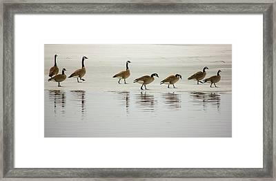 Lovely Day For A Stroll Framed Print