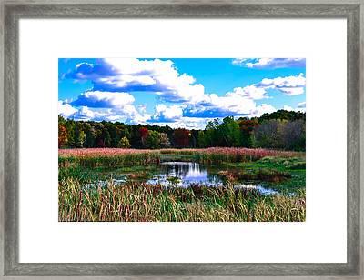 Lovely Day Framed Print by Michelle and John Ressler