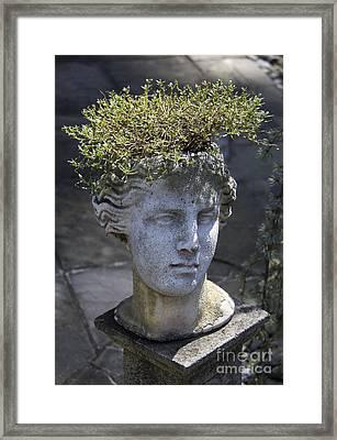 Lovely Lady Framed Print by Teresa Mucha