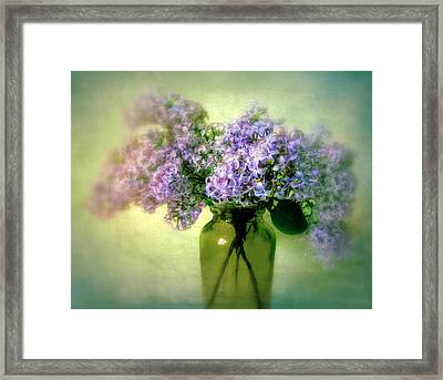 Lovely Lilac  Framed Print