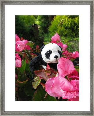 Lovely Pink Flower Framed Print