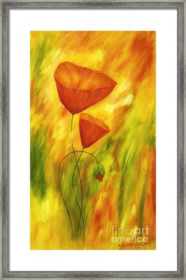 Lovely Poppies Framed Print by Veikko Suikkanen