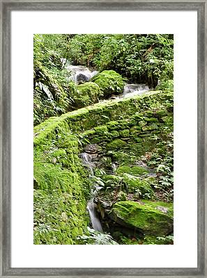 Lovely Waterfall Framed Print