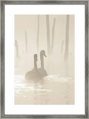 Lovers Adrift Framed Print