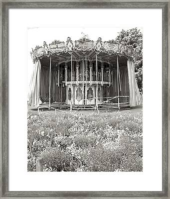 Framed Print featuring the photograph Lovers Carousel by Colleen Williams