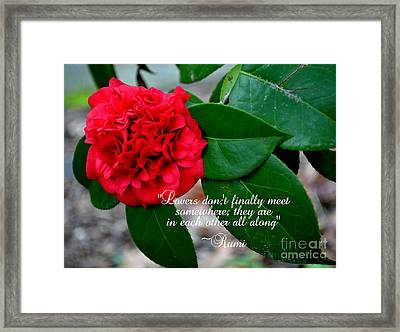 Lovers Don't-rumi Framed Print