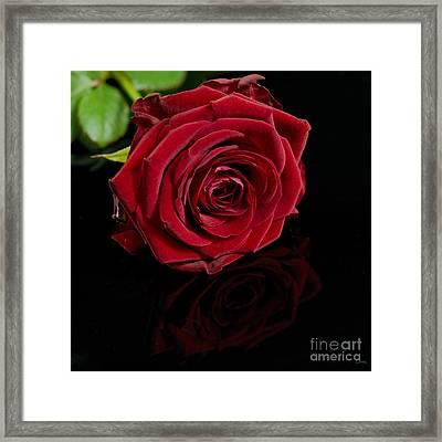 Lovers Gift Framed Print by Wobblymol Davis