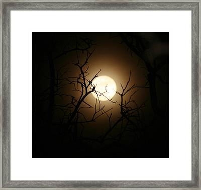 Lovers' Moon Framed Print