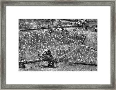 Lovers On Daffodil Hill Framed Print