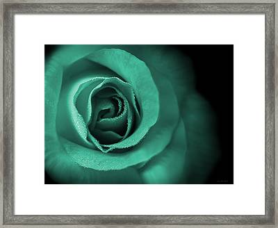 Love's Eternal Teal Green Rose Framed Print by Jennie Marie Schell