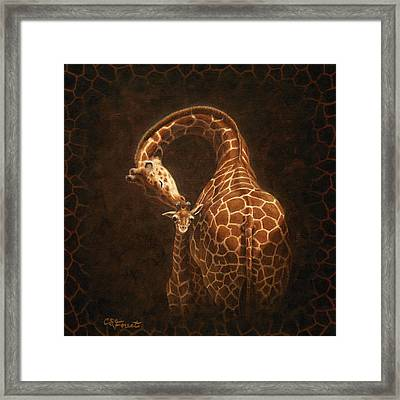 Love's Golden Touch Framed Print by Crista Forest
