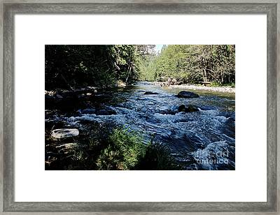 Loving She - Nature  Framed Print by Tim Rice