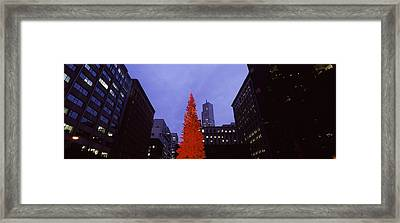 Low Angle View Of A Christmas Tree, San Framed Print by Panoramic Images