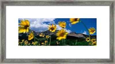 Low Angle View Of Mountains, Montana Framed Print by Panoramic Images