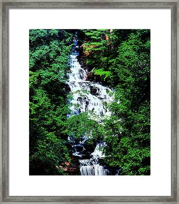 Low Angle View Of The Wolf Creek Falls Framed Print