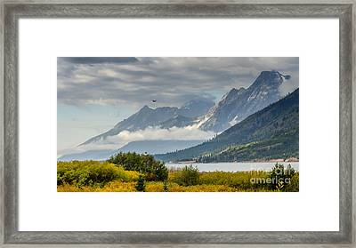 Low Clouds On The Teton Mountains Framed Print by Debra Martz
