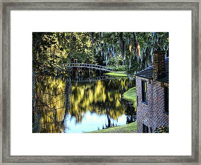 Framed Print featuring the photograph Low Country Impressions by Jim Hill