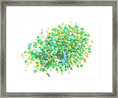 Low-density Lipoprotein Degradation Framed Print by Maurizio De Angelis
