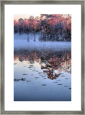 Low Hanging Framed Print