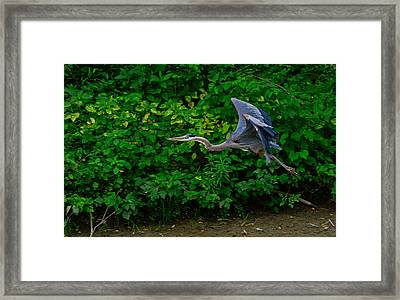 Low Pass Framed Print