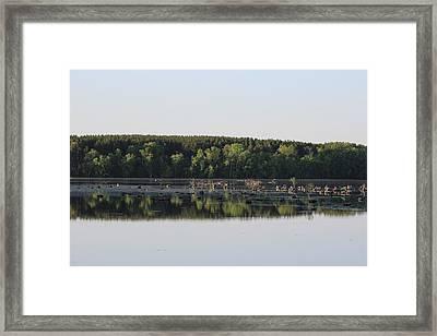 Low River Framed Print by Christine Hafeman