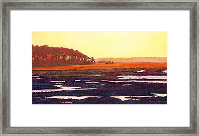 Low Tide Framed Print by David Randall
