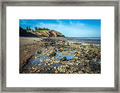 Low Tide. Framed Print