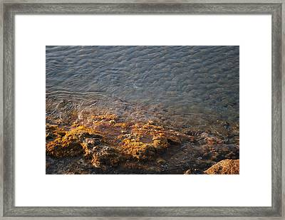Framed Print featuring the photograph Low Tide by George Katechis